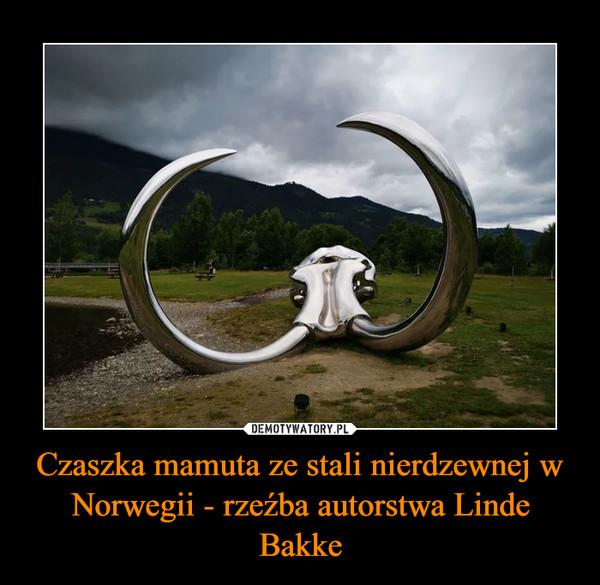 Czaszka mamuta ze stali nierdzewnej w Norwegii - rzeźba autorstwa Linde Bakke –