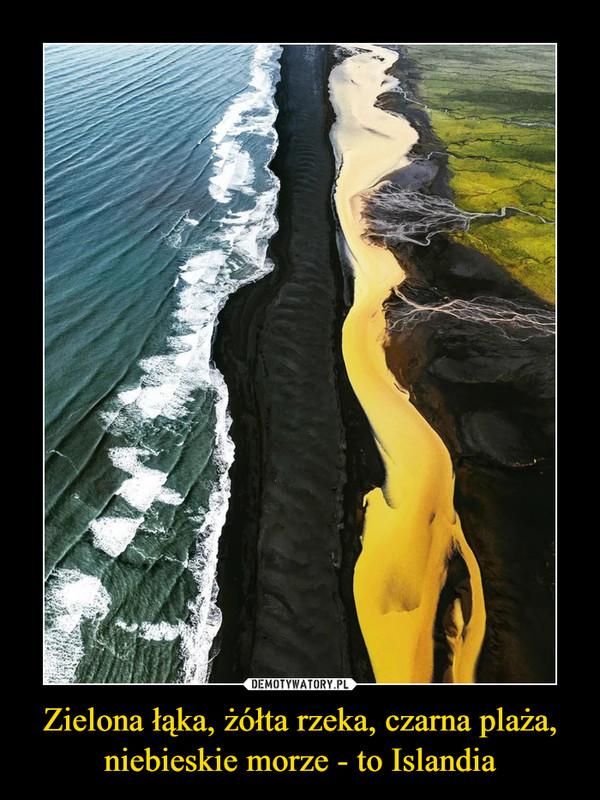 Zielona łąka, żółta rzeka, czarna plaża, niebieskie morze - to Islandia –