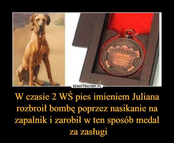 W czasie 2 WŚ pies imieniem Juliana rozbroił bombę poprzez nasikanie na zapalnik i zarobił w ten sposób medal za zasługi –
