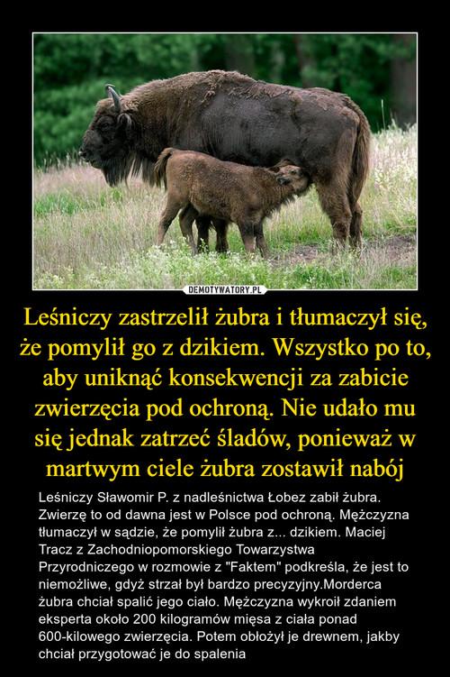 Leśniczy zastrzelił żubra i tłumaczył się, że pomylił go z dzikiem. Wszystko po to, aby uniknąć konsekwencji za zabicie zwierzęcia pod ochroną. Nie udało mu się jednak zatrzeć śladów, ponieważ w martwym ciele żubra zostawił nabój