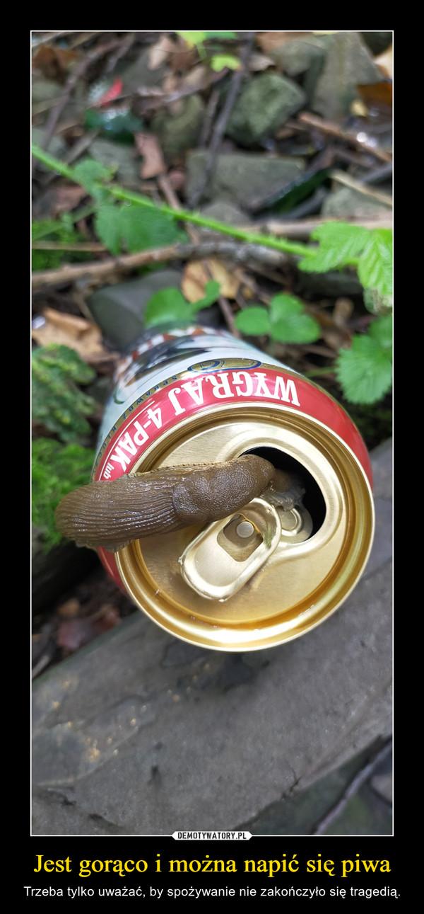Jest gorąco i można napić się piwa – Trzeba tylko uważać, by spożywanie nie zakończyło się tragedią.