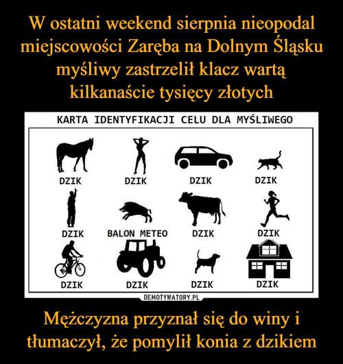 W ostatni weekend sierpnia nieopodal miejscowości Zaręba na Dolnym Śląsku myśliwy zastrzelił klacz wartą kilkanaście tysięcy złotych Mężczyzna przyznał się do winy i tłumaczył, że pomylił konia z dzikiem