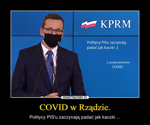 COVID w Rządzie.