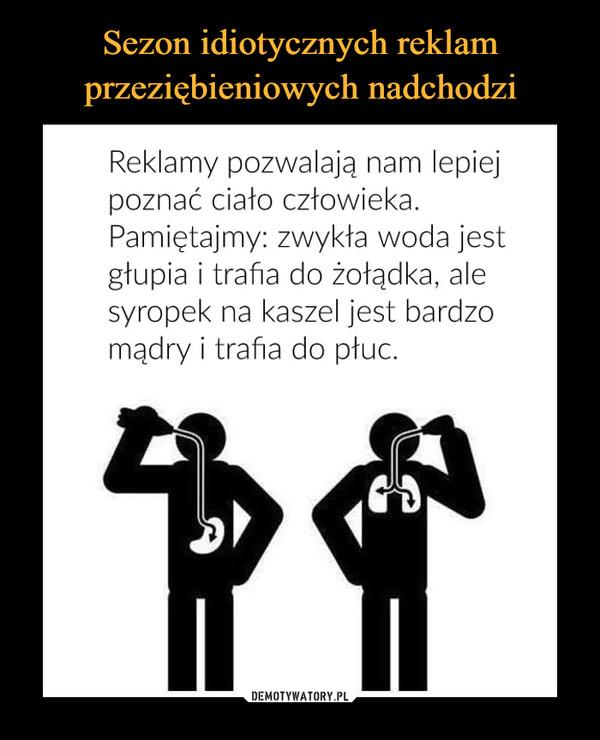 https://img2.demotywatoryfb.pl//uploads/202010/1602602955_r7lmdz_600.jpg