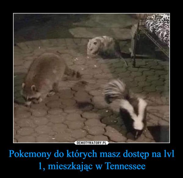 Pokemony do których masz dostęp na lvl 1, mieszkając w Tennessee –