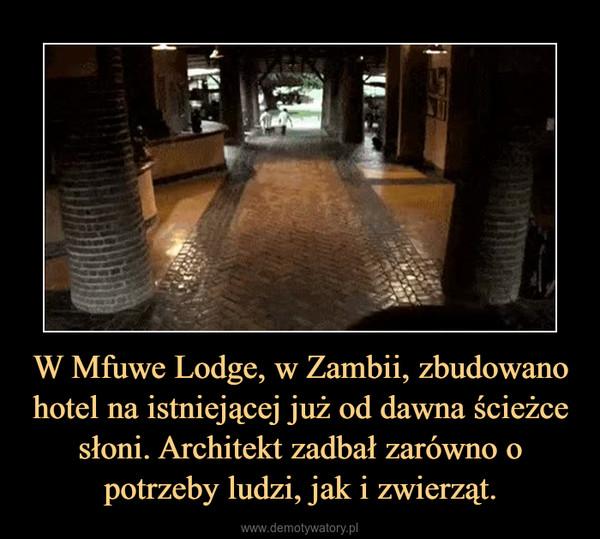 W Mfuwe Lodge, w Zambii, zbudowano hotel na istniejącej już od dawna ścieżce słoni. Architekt zadbał zarówno o potrzeby ludzi, jak i zwierząt. –
