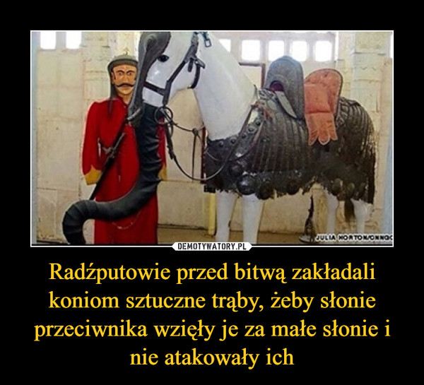 Radźputowie przed bitwą zakładali koniom sztuczne trąby, żeby słonie przeciwnika wzięły je za małe słonie i nie atakowały ich –