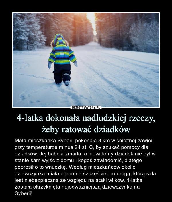 4-latka dokonała nadludzkiej rzeczy, żeby ratować dziadków – Mała mieszkanka Syberii pokonała 8 km w śnieżnej zawiei przy temperaturze minus 24 st. C, by szukać pomocy dla dziadków. Jej babcia zmarła, a niewidomy dziadek nie był w stanie sam wyjść z domu i kogoś zawiadomić, dlatego poprosił o to wnuczkę. Według mieszkańców okolic dziewczynka miała ogromne szczęście, bo drogą, którą szła jest niebezpieczna ze względu na ataki wilków. 4-latka została okrzyknięta najodważniejszą dziewczynką na Syberii!