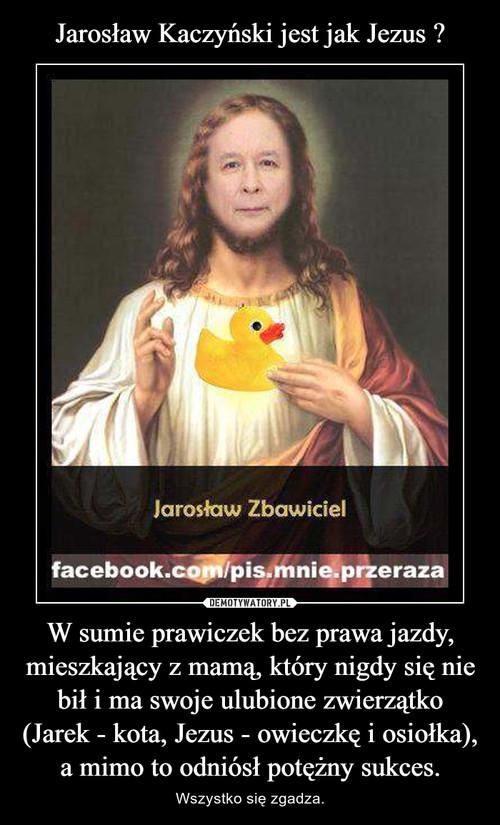 Jarosław Kaczyński jest jak Jezus ? W sumie prawiczek bez prawa jazdy, mieszkający z mamą, który nigdy się nie bił i ma swoje ulubione zwierzątko (Jarek - kota, Jezus - owieczkę i osiołka), a mimo to odniósł potężny sukces.