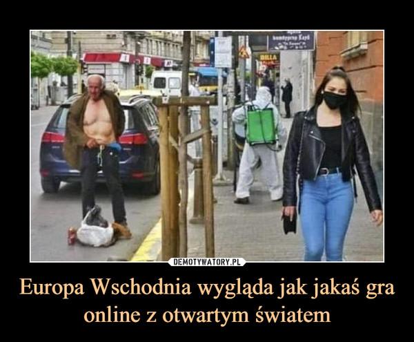Europa Wschodnia wygląda jak jakaś gra online z otwartym światem –