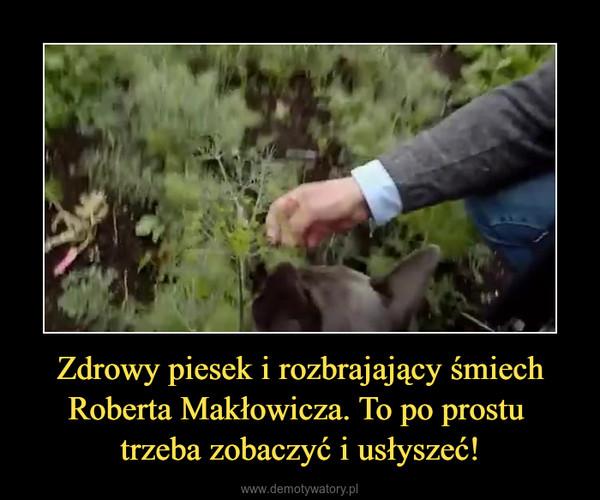 Zdrowy piesek i rozbrajający śmiech Roberta Makłowicza. To po prostu trzeba zobaczyć i usłyszeć! –