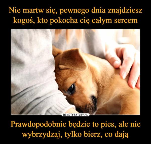 Prawdopodobnie będzie to pies, ale nie wybrzydzaj, tylko bierz, co dają –