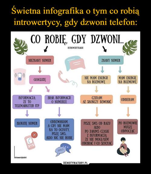 Świetna infografika o tym co robią introwertycy, gdy dzwoni telefon: