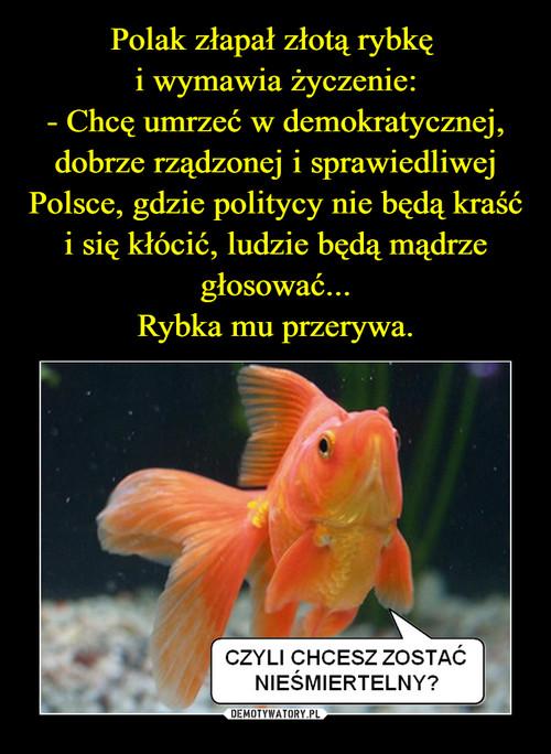 Polak złapał złotą rybkę  i wymawia życzenie: - Chcę umrzeć w demokratycznej, dobrze rządzonej i sprawiedliwej Polsce, gdzie politycy nie będą kraść i się kłócić, ludzie będą mądrze głosować... Rybka mu przerywa.