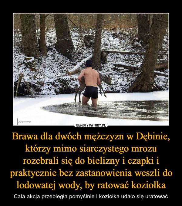 Brawa dla dwóch mężczyzn w Dębinie, którzy mimo siarczystego mrozu rozebrali się do bielizny i czapki i praktycznie bez zastanowienia weszli do lodowatej wody, by ratować koziołka – Cała akcja przebiegła pomyślnie i koziołka udało się uratować