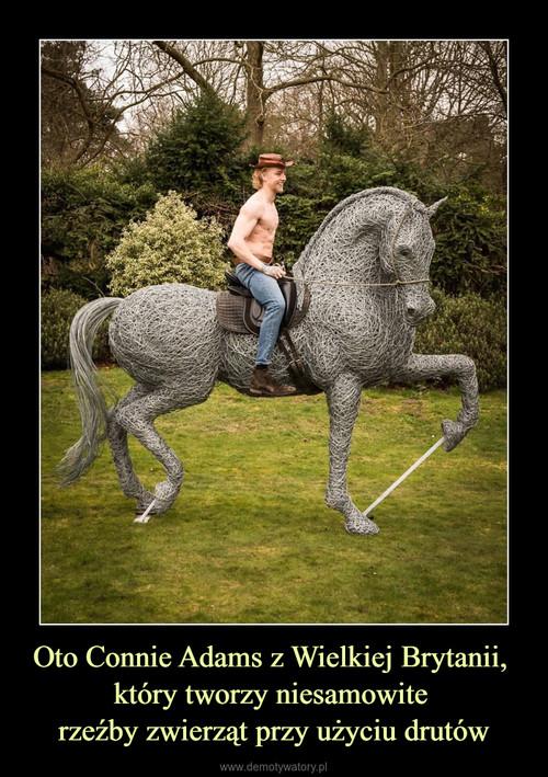 Oto Connie Adams z Wielkiej Brytanii,  który tworzy niesamowite  rzeźby zwierząt przy użyciu drutów