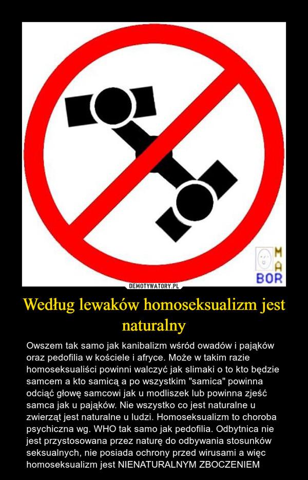 """Według lewaków homoseksualizm jest naturalny – Owszem tak samo jak kanibalizm wśród owadów i pająków oraz pedofilia w kościele i afryce. Może w takim razie homoseksualiści powinni walczyć jak slimaki o to kto będzie samcem a kto samicą a po wszystkim """"samica"""" powinna odciąć głowę samcowi jak u modliszek lub powinna zjeść samca jak u pająków. Nie wszystko co jest naturalne u zwierząt jest naturalne u ludzi. Homoseksualizm to choroba psychiczna wg. WHO tak samo jak pedofilia. Odbytnica nie jest przystosowana przez naturę do odbywania stosunków seksualnych, nie posiada ochrony przed wirusami a więc homoseksualizm jest NIENATURALNYM ZBOCZENIEM"""