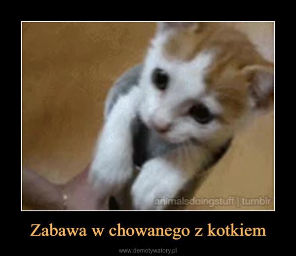 Zabawa w chowanego z kotkiem –