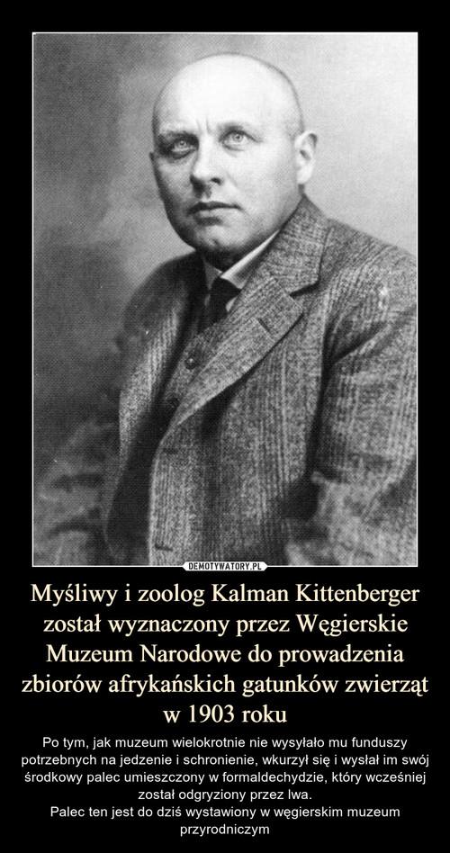 Myśliwy i zoolog Kalman Kittenberger został wyznaczony przez Węgierskie Muzeum Narodowe do prowadzenia zbiorów afrykańskich gatunków zwierząt w 1903 roku