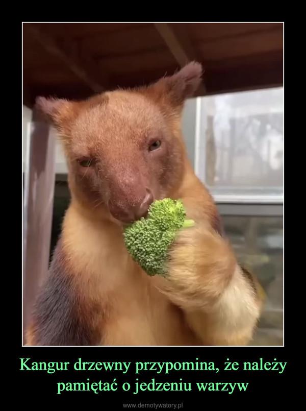 Kangur drzewny przypomina, że należy pamiętać o jedzeniu warzyw –