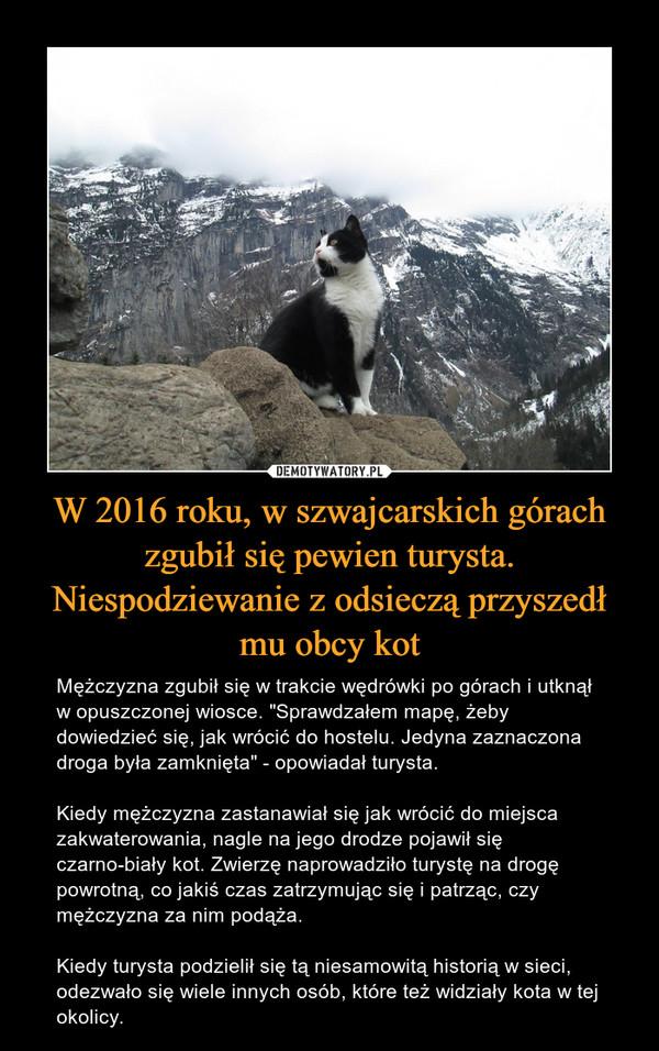"""W 2016 roku, w szwajcarskich górach zgubił się pewien turysta. Niespodziewanie z odsieczą przyszedł mu obcy kot – Mężczyzna zgubił się w trakcie wędrówki po górach i utknął w opuszczonej wiosce. """"Sprawdzałem mapę, żeby dowiedzieć się, jak wrócić do hostelu. Jedyna zaznaczona droga była zamknięta"""" - opowiadał turysta.Kiedy mężczyzna zastanawiał się jak wrócić do miejsca zakwaterowania, nagle na jego drodze pojawił się czarno-biały kot. Zwierzę naprowadziło turystę na drogę powrotną, co jakiś czas zatrzymując się i patrząc, czy mężczyzna za nim podąża.Kiedy turysta podzielił się tą niesamowitą historią w sieci, odezwało się wiele innych osób, które też widziały kota w tej okolicy."""