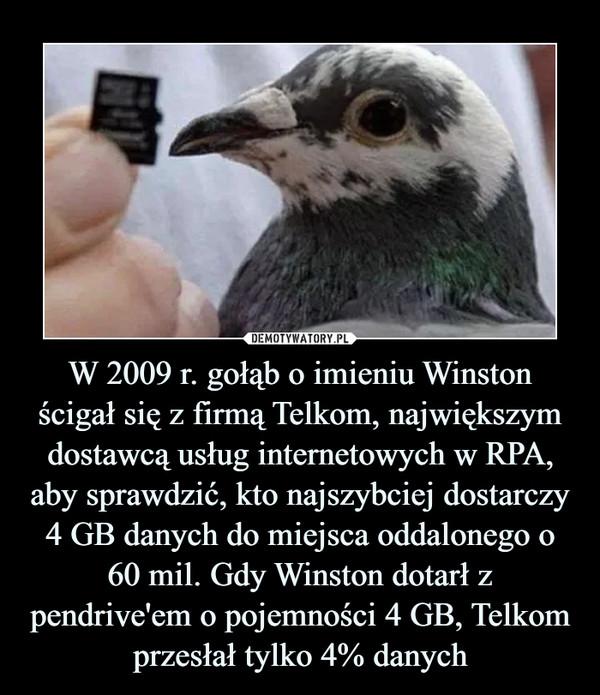 W 2009 r. gołąb o imieniu Winston ścigał się z firmą Telkom, największym dostawcą usług internetowych w RPA, aby sprawdzić, kto najszybciej dostarczy 4 GB danych do miejsca oddalonego o 60 mil. Gdy Winston dotarł z pendrive'em o pojemności 4 GB, Telkom przesłał tylko 4% danych –