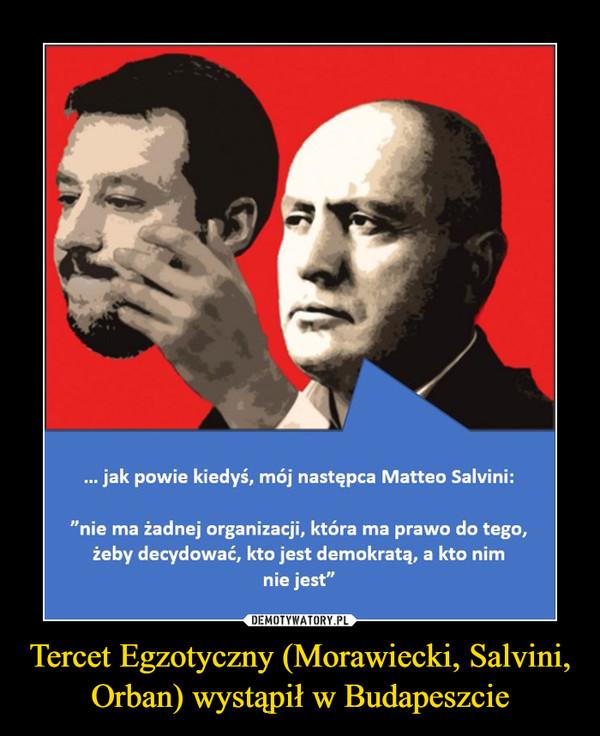 Tercet Egzotyczny (Morawiecki, Salvini, Orban) wystąpił w Budapeszcie –