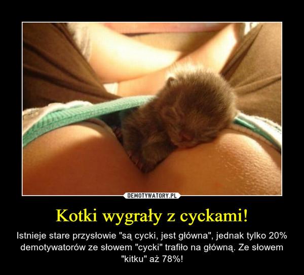 """Kotki wygrały z cyckami! – Istnieje stare przysłowie """"są cycki, jest główna"""", jednak tylko 20% demotywatorów ze słowem """"cycki"""" trafiło na główną. Ze słowem """"kitku"""" aż 78%!"""