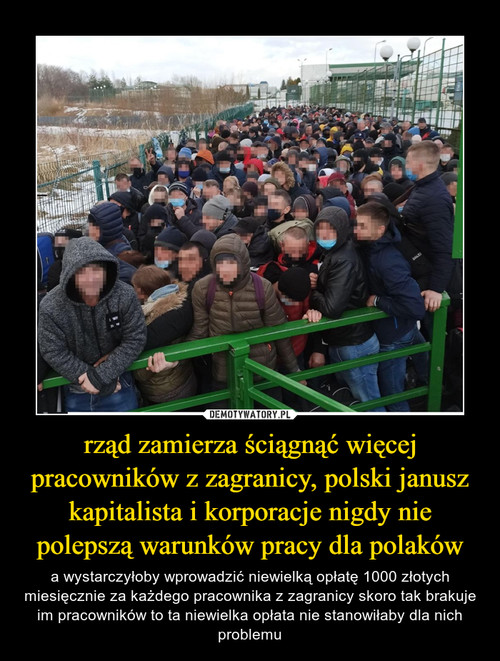 rząd zamierza ściągnąć więcej pracowników z zagranicy, polski janusz kapitalista i korporacje nigdy nie polepszą warunków pracy dla polaków