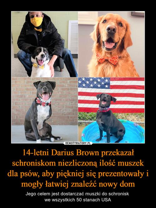 14-letni Darius Brown przekazał schroniskom niezliczoną ilość muszek dla psów, aby piękniej się prezentowały i mogły łatwiej znaleźć nowy dom