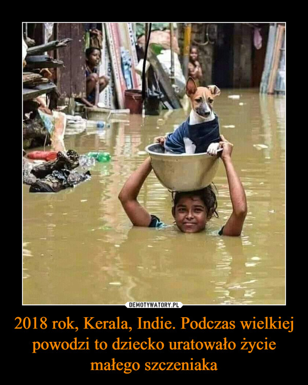2018 rok, Kerala, Indie. Podczas wielkiej powodzi to dziecko uratowało życie małego szczeniaka –