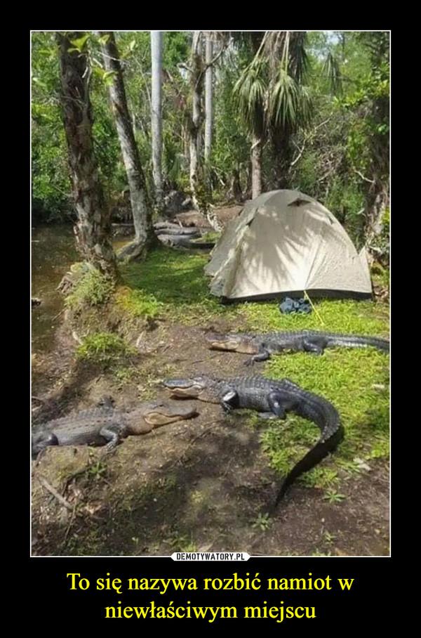 To się nazywa rozbić namiot w niewłaściwym miejscu –