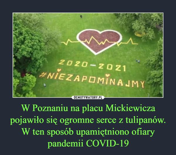 W Poznaniu na placu Mickiewicza pojawiło się ogromne serce z tulipanów. W ten sposób upamiętniono ofiary pandemii COVID-19 –