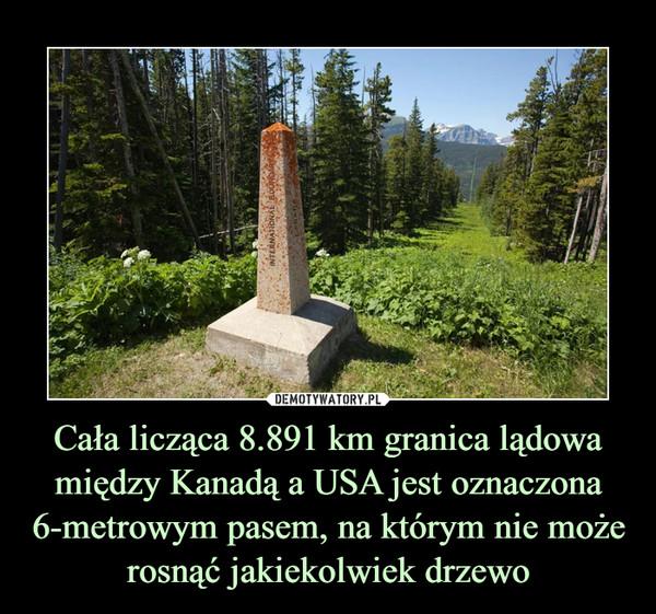 Cała licząca 8.891 km granica lądowa między Kanadą a USA jest oznaczona 6-metrowym pasem, na którym nie może rosnąć jakiekolwiek drzewo –