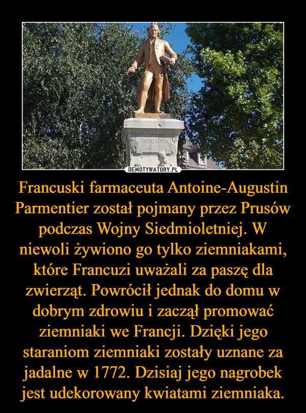 Francuski farmaceuta Antoine-Augustin Parmentier został pojmany przez Prusów podczas Wojny Siedmioletniej. W niewoli żywiono go tylko ziemniakami, które Francuzi uważali za paszę dla zwierząt. Powrócił jednak do domu w dobrym zdrowiu i zaczął promować ziemniaki we Francji. Dzięki jego staraniom ziemniaki zostały uznane za jadalne w 1772. Dzisiaj jego nagrobek jest udekorowany kwiatami ziemniaka. –