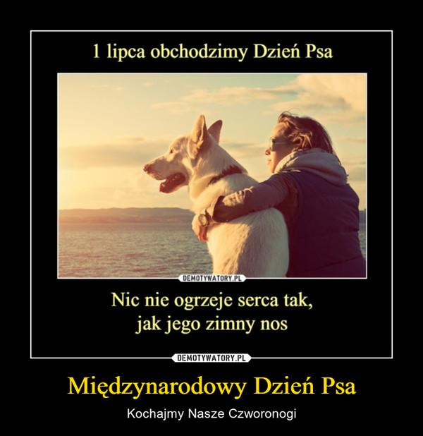 Międzynarodowy Dzień Psa – Kochajmy Nasze Czworonogi