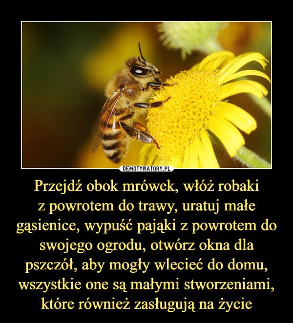 Przejdź obok mrówek, włóż robakiz powrotem do trawy, uratuj małe gąsienice, wypuść pająki z powrotem do swojego ogrodu, otwórz okna dla pszczół, aby mogły wlecieć do domu, wszystkie one są małymi stworzeniami, które również zasługują na życie –