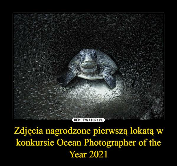 Zdjęcia nagrodzone pierwszą lokatą w konkursie Ocean Photographer of the Year 2021 –