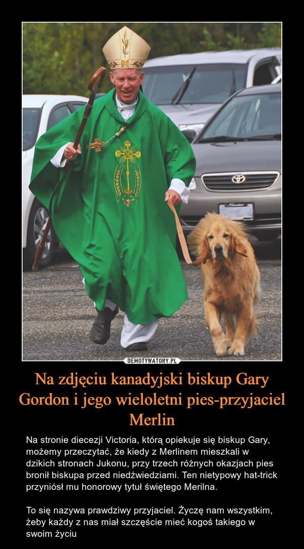 Na zdjęciu kanadyjski biskup Gary Gordon i jego wieloletni pies-przyjaciel Merlin – Na stronie diecezji Victoria, którą opiekuje się biskup Gary, możemy przeczytać, że kiedy z Merlinem mieszkali w dzikich stronach Jukonu, przy trzech różnych okazjach pies bronił biskupa przed niedźwiedziami. Ten nietypowy hat-trick przyniósł mu honorowy tytuł świętego Merilna.To się nazywa prawdziwy przyjaciel. Życzę nam wszystkim, żeby każdy z nas miał szczęście mieć kogoś takiego w swoim życiu