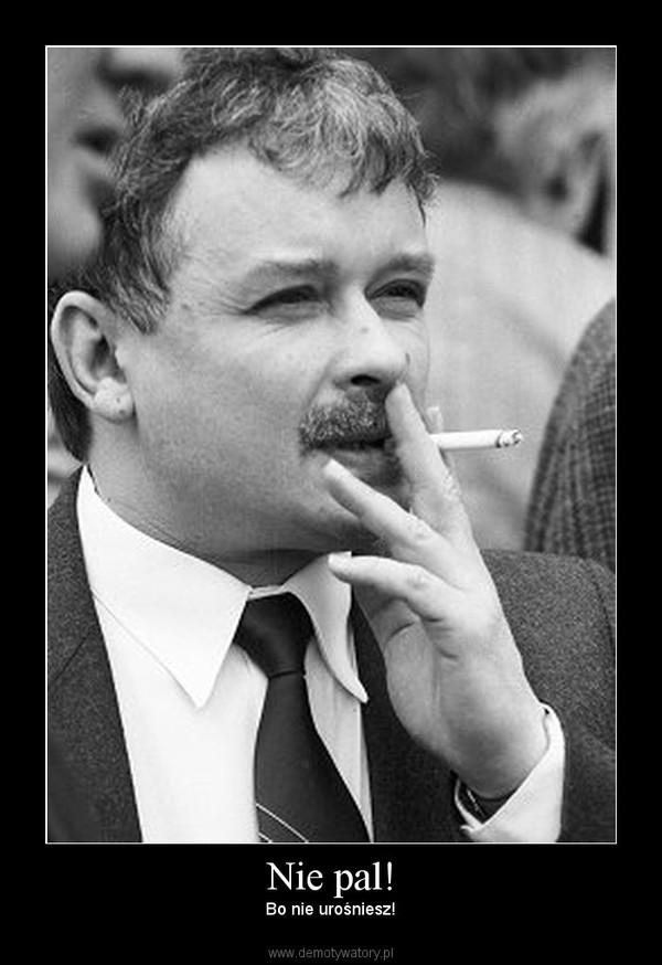 Polski rynek papierosów zdominowany jest, jak pisze Brosz, <b>przez</b> ...