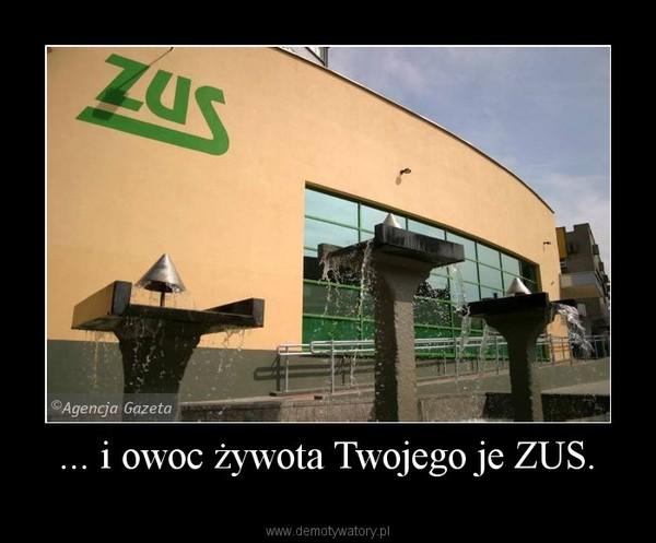 img2.demotywatoryfb.pl/uploads/201004/1270335375_by_AmeryKKKo_600.jpg