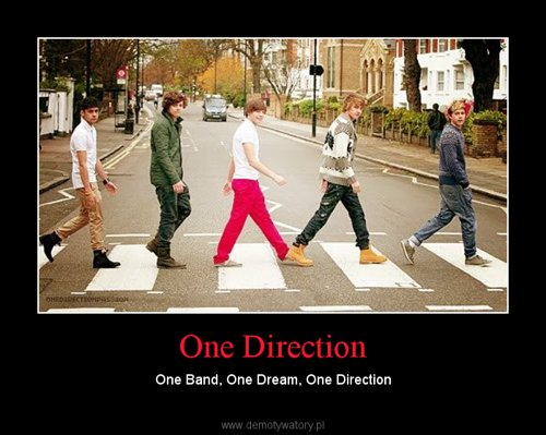 One Direction – One Band, One Dream, One Direction