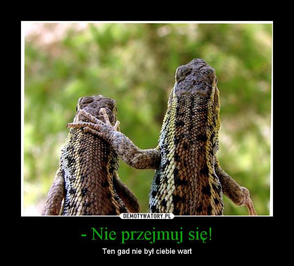 - Nie przejmuj się!