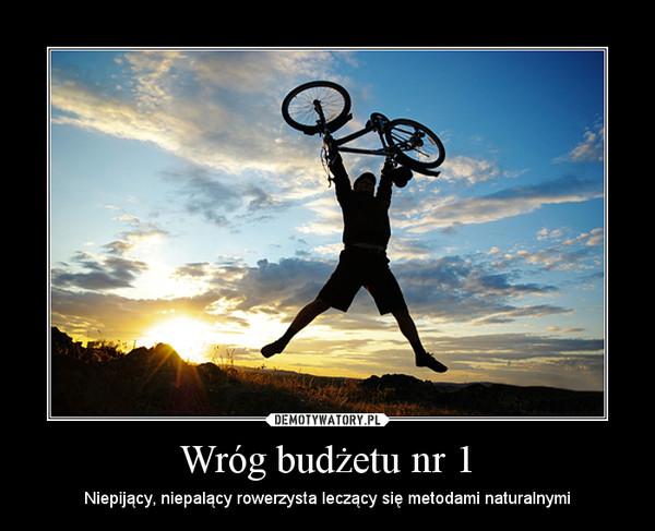 Wróg budżetu nr 1 – Niepijący, niepalący rowerzysta leczący się metodami naturalnymi