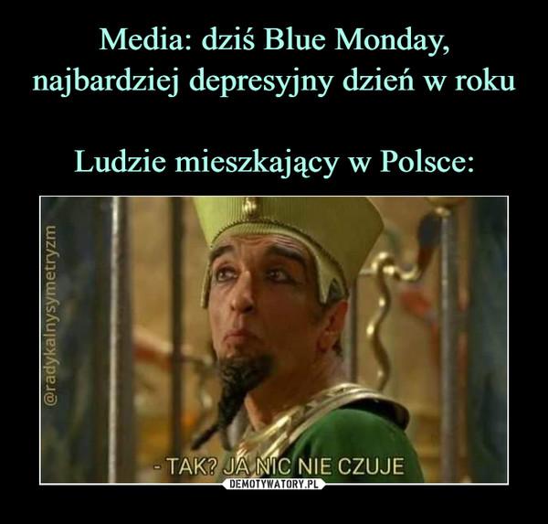 Media: dziś Blue Monday, najbardziej depresyjny dzień w roku Ludzie mieszkający w Polsce: